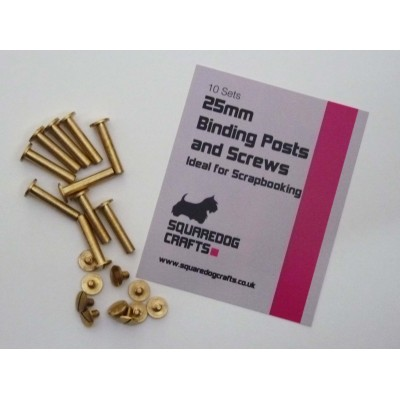 25mm Binding Posts and Screws 100 pack, Free Shipping in UK