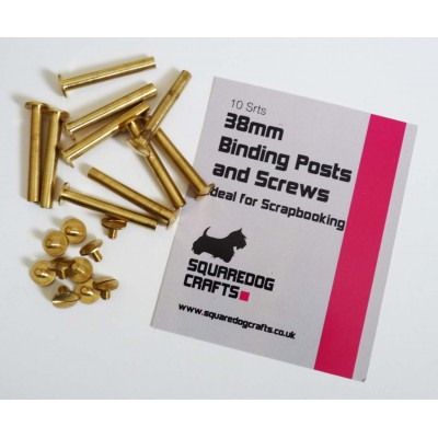 38mm Binding Posts and Screws 10 Pack