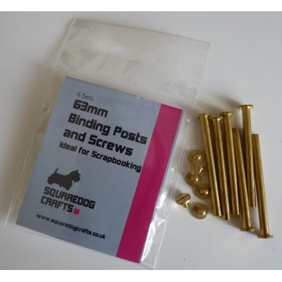 64mm Binding Posts and Screws 10 Pack